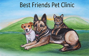 Best Friends Pet Clinic